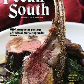 Pecan South Magazine