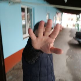 Geor Dztcv