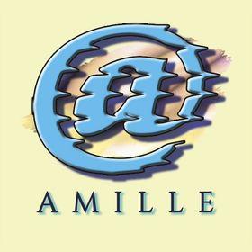 Web & Grafica AMILLE