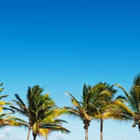Vacationisms Worldwide Travel