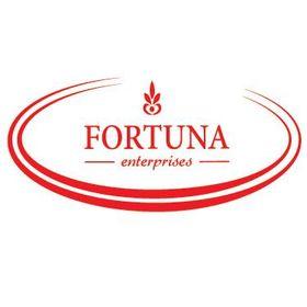 Fortuna Enterprises