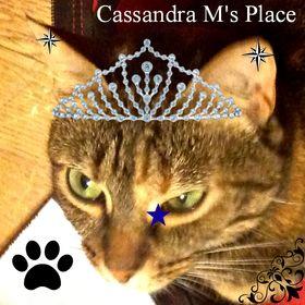 Cassandra Mccann