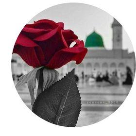 YA ALI MOLA A.S Mohammad
