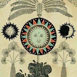 Millie Sunflower
