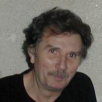 Ioan Anton