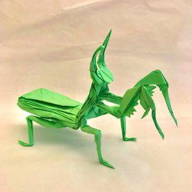 loi nguyen origami