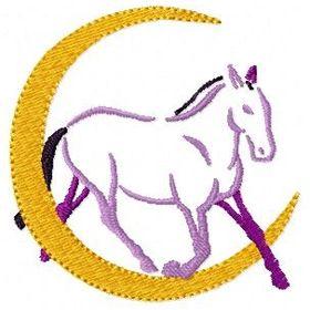 Moon Valley Sport Horses
