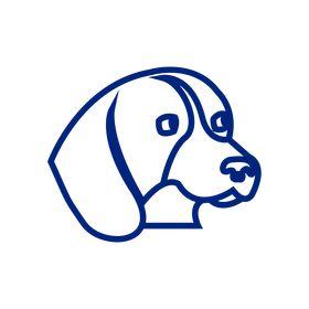 Labrador Retrievers Life