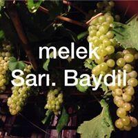 Melek Baydil