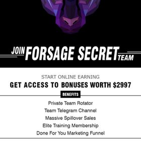 Forsage Secrets Team|Work From Home|Make Money Online|Marketing|