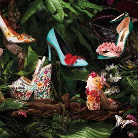 The Shoe World