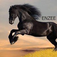 Mechanic Enzee