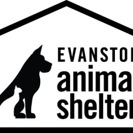 Evanston Pets