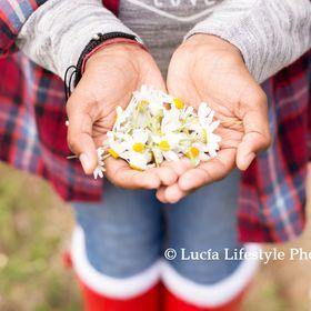 lucialifestylephotography