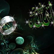 Chahed-fatima Bens