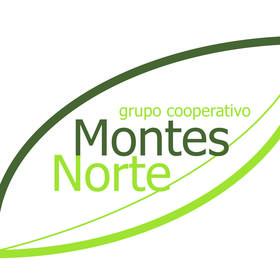 Grupo Montes