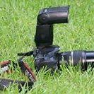 Ign Fotografio