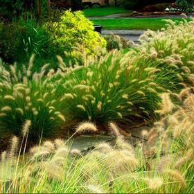 Bethesda Garden Design
