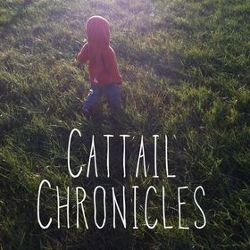 Cattail Chronicles