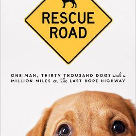 52 Dog Rescue News Ideas Rescue Rescue Dogs Dogs