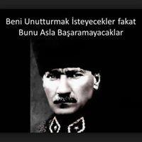 Olcay Yilmaz