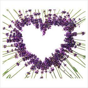 LavenderHeart Music