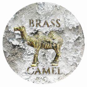Brass Camel Designs