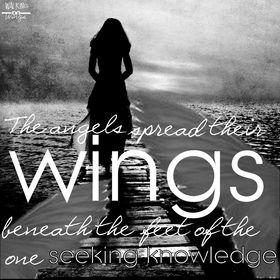 walking on wings .