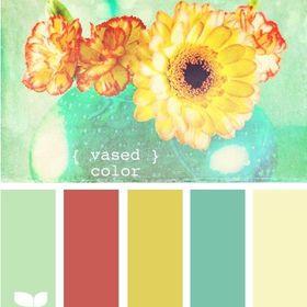 Colormadam