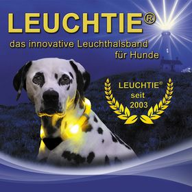Leuchthalsband LEUCHTIE // LED light collar