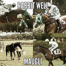 Rabbit Well a Mauglí