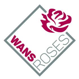 Wans Roses
