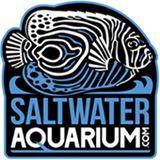 SaltwaterAquarium.com