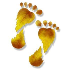 Footprints & Whispers