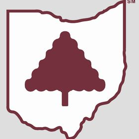 The Ohio Valley Group, Inc.