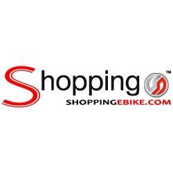 Shopping Ebike