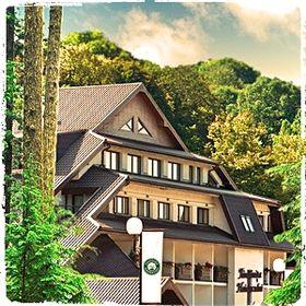 Hotel & Restaurant Fantanita Haiducului