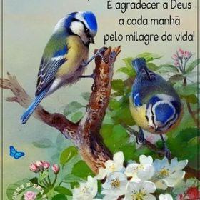Alaide Martins