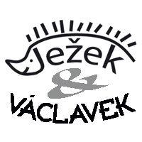 Dětská hřiště - Ježek & Václavek