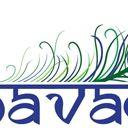Bhavam