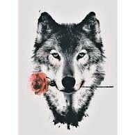 Alphette Wolfa