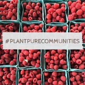 PlantPure Communities