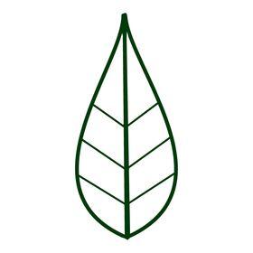 Greeneiro
