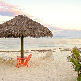 Visit Grand Bahama