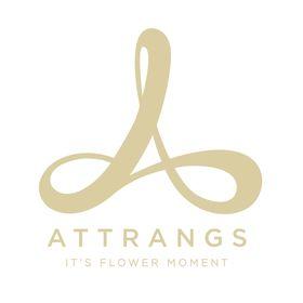 Attrangs.com ♥