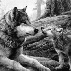 Pilar Wolf