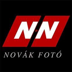 Novák Fotó