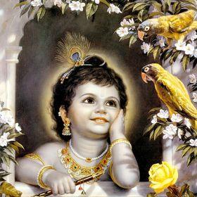 krishna jyothi