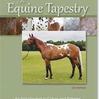 Equine Tapestry