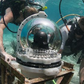 View Into The Blue Live Streaming Underwater Webcams